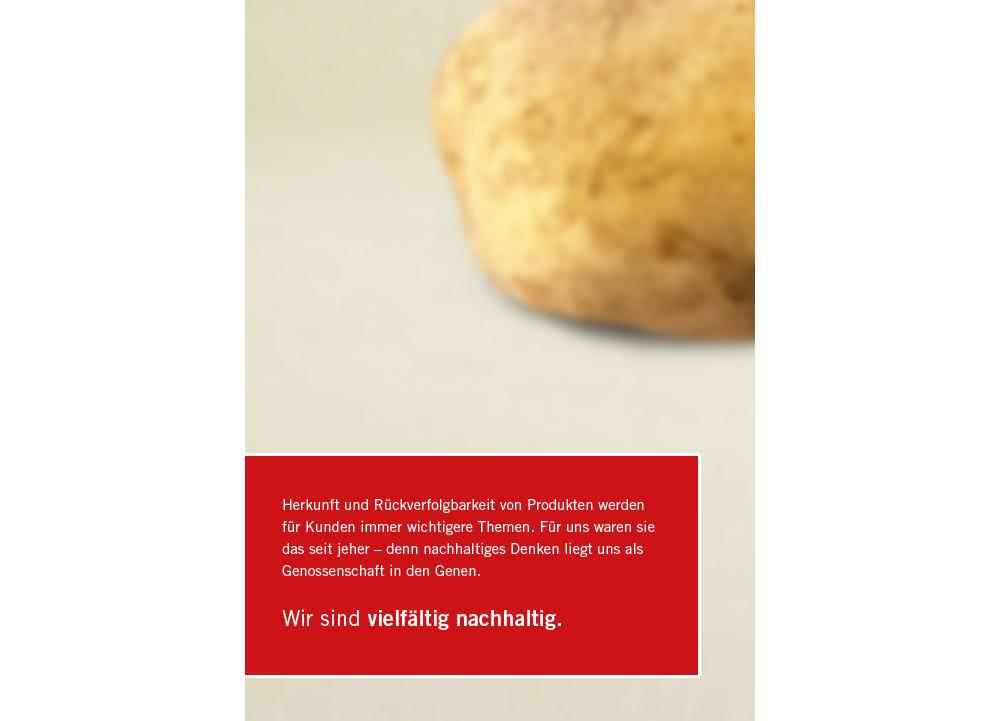"""REWE Copy Nachhaltigkeitsgeschichten """"Kartoffel"""""""